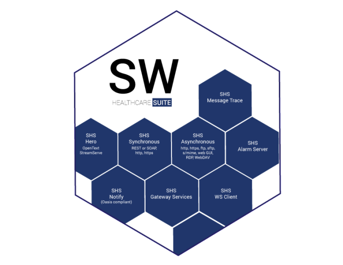 Swedwise Healthcare Suite Application Overview